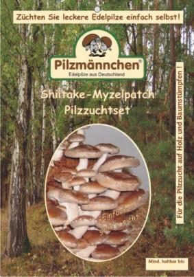 Shiitake Pilzbrut Myzelpatch