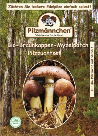 Braunkappen Pilzbrut Myzel